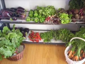 Organic, local veggies @ Gogo's